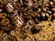 chicchi di caffe