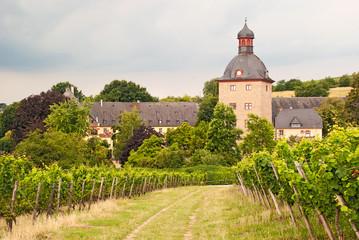 Schloss Vollrads inmitten der Weinberge des Rheingaus