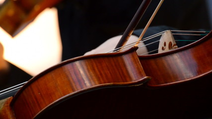 Musician playing violin on a concert in close up