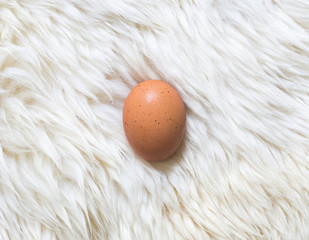 egg on white fur carpet