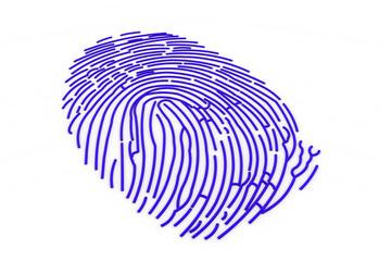 3d fingerprint..