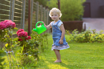 Cute toddler girl watering flowers in the backyard garden