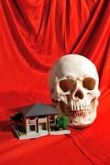 家の模型と骸骨
