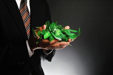 グリーンの葉を持っているスーツのビジネスマンの男性