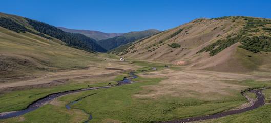 pasture nomads