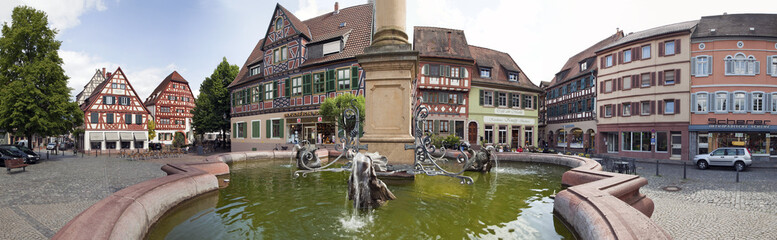 Ladenburg Marktplatz Panorama