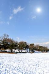 목초지 들판 및 자연풍경 이미지