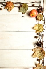Fall leaves with apples