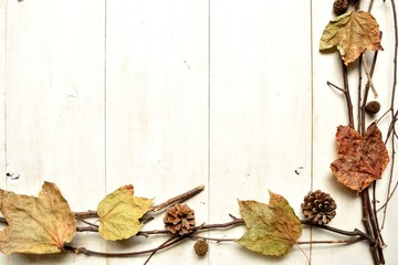 Fall leaves with pine cones