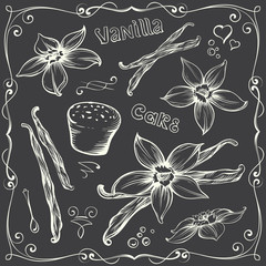 Freehand Contours of Vanilla Flowers and Bakery Clip-art