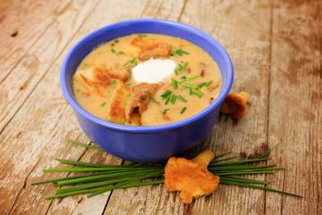 Chanterelle - Cream of chanterelle mushroom soup