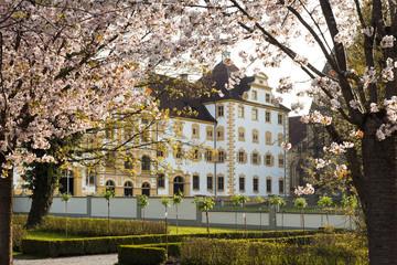 Schloss Salem im Frühling