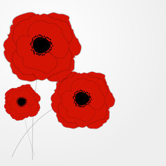 Red Poppies Flower Background Vector Illustration