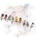Watercolor Image Of Perching Birds