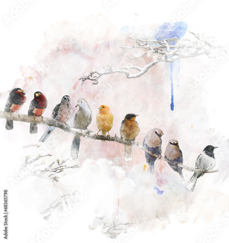 Tuinposter Vogel Watercolor Image Of Perching Birds