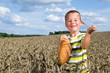 kleiner Junge mit einem Brot im Kornfeld