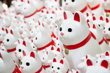 Lucky Cat Statues in a Japanese Shrine