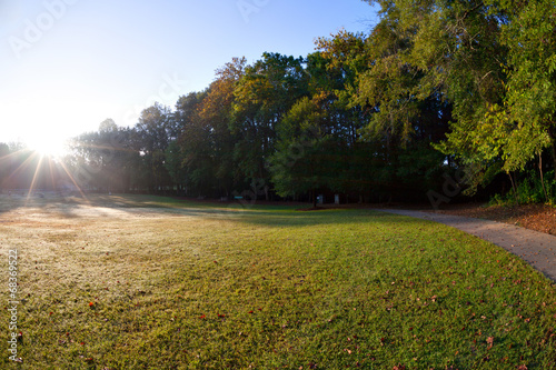 canvas print picture Beautiful park morning view