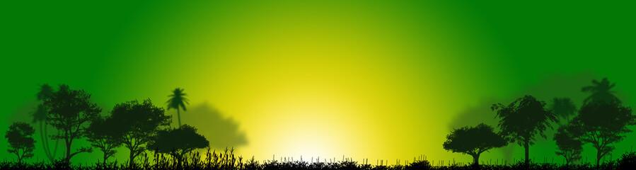 piante, vegetazione, foresta, palude