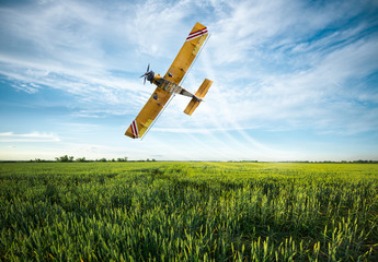 plane sprayed crops in the field