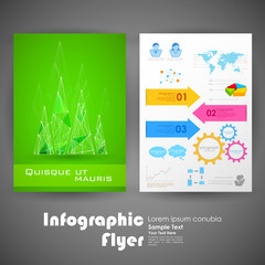 Business Infographic Flyer