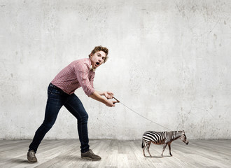 Zebra on lead