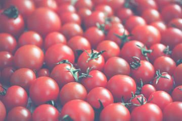 retro tomatoes