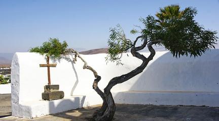 Rincón de un patio canario en Lanzarote, Islas Canarias