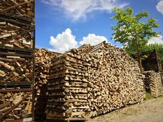 Holzscheite gegen die Winterkälte
