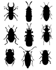Black silhouettes of bugs, vector