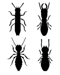 Black silhouettes of termites, vector