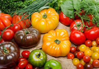 Composition of different varieties of tomatoes and herbs