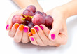 Women's hands holding branch of red grape