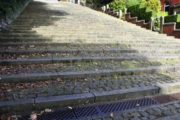 Huge flight of Steps