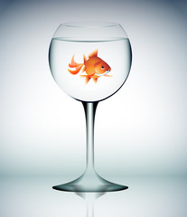 vetro, acqua, bicchiere