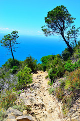 path, walking and sight Levanto-Monterosso, Cinque Terre, Italy