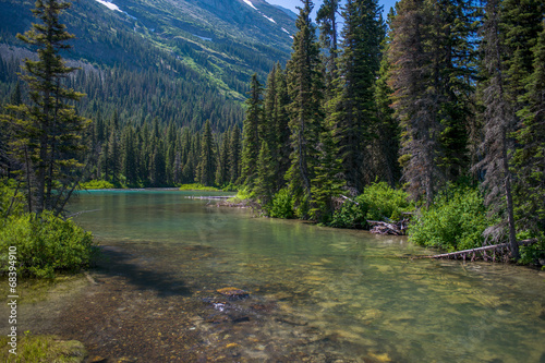 Fotobehang Rivier peaceful stream, montana