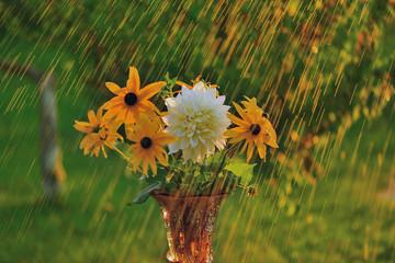 Летний дождь и цветы