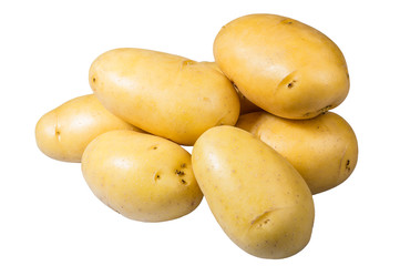 White potatoes fresh picked isolated