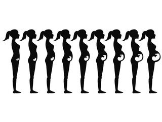 pregnancy stages Silhouette