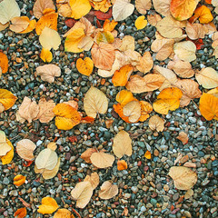 Autumn wet leaves background over rocks