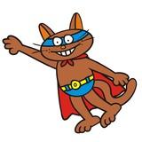 Tomcat-superman poster