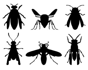 Black silhouettes of wasps, vector