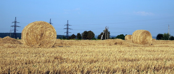 Grass and bales of hay