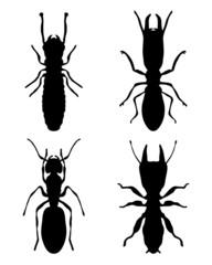Black silhouettes of termites, vector