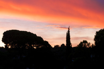Sunset in South of France