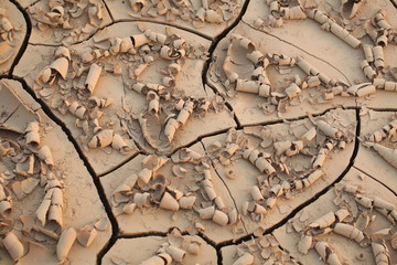 dried up cracked earth