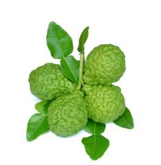 Group of kaffir Lime or Bergamot fruit on white background.