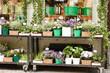 Obrazy na płótnie, fototapety, zdjęcia, fotoobrazy drukowane : flower shop outdoor