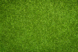 Artificial grass texture poster